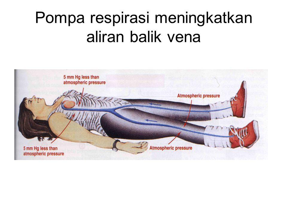 Pompa respirasi meningkatkan aliran balik vena