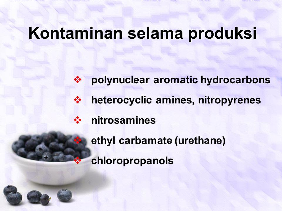 Penggunaan BTP yang dilarang  borax  boric acid  formaldehyde  unapproved colouring agents