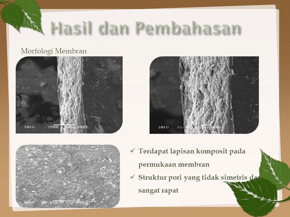 Morfologi Membran Terdapat lapisan komposit pada permukaan membran Struktur pori yang tidak simetris dan sangat rapat