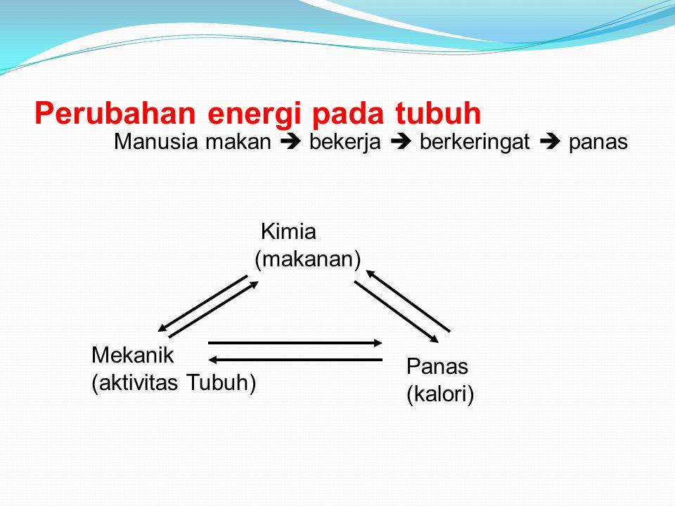 Perubahan energi pada tubuh Manusia makan  bekerja  berkeringat  panas Mekanik (aktivitas Tubuh) Kimia (makanan) Panas (kalori)