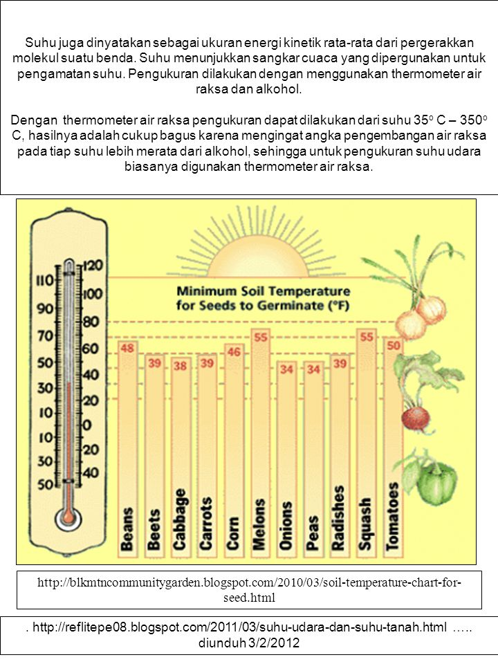 SUHU TANAH – PERKECAMBAHAN BENIH The soil temperature for planting vegetables should be: 40° F or warmer: Lettuce, kale, peas, spinach.