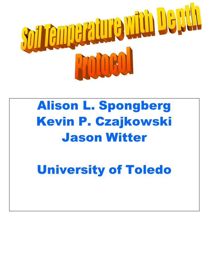 Alison L. Spongberg Kevin P. Czajkowski Jason Witter University of Toledo