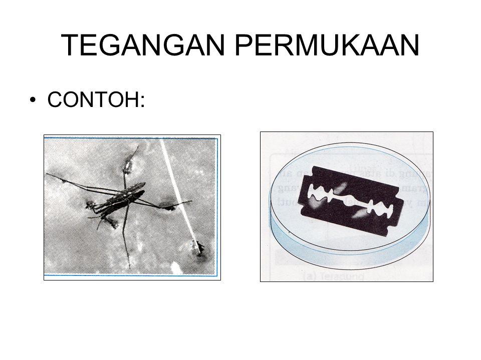Contoh :  Silet dapat mengapung di air  Nyamuk dapat hinggap di atas air  Secara matematis tegangan permukaan di rumuskan : Dengan: F : gaya (N) l : panjang (m)  ; tegangan permukaan (N/m)