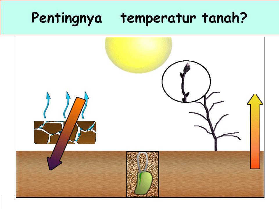 Temperatur tanah Salah satu sifat fisika tanah yang sangat berpengaruh terhadap proses-proses dalam tanah, seperti pelapukan dan penguraian bahan organik dan bahan induk tanah, reaksi-reaksi kimia, dll.
