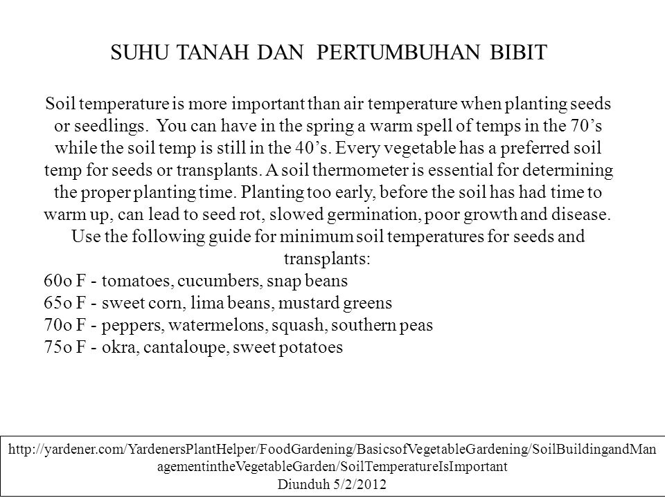 SUHU TANAH DAN PERTUMBUHAN BIBIT Soil temperature is more important than air temperature when planting seeds or seedlings. You can have in the spring