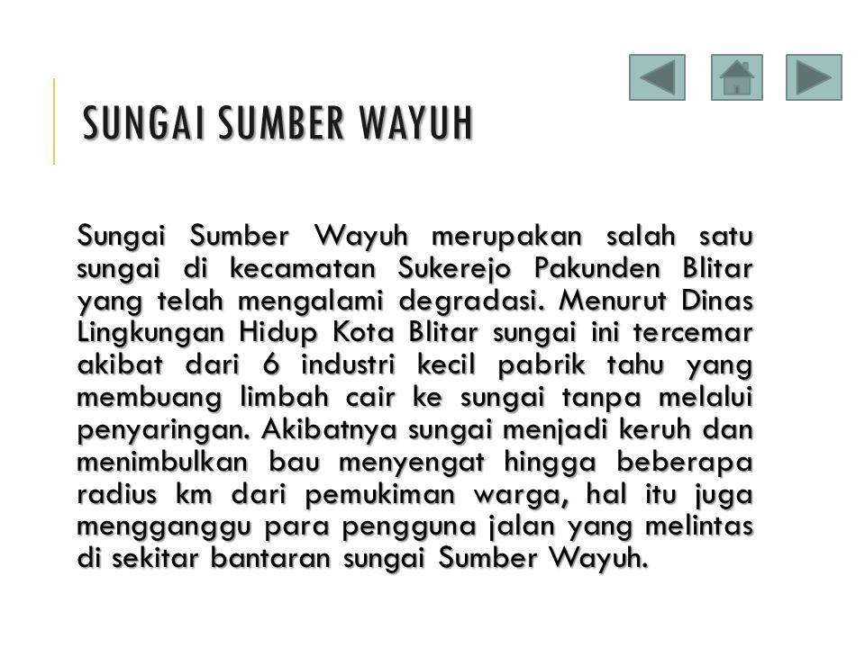SUNGAI SUMBER WAYUH Sungai Sumber Wayuh merupakan salah satu sungai di kecamatan Sukerejo Pakunden Blitar yang telah mengalami degradasi. Menurut Dina