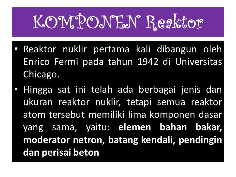 Reaktor nuklir pertama kali dibangun oleh Enrico Fermi pada tahun 1942 di Universitas Chicago. Hingga sat ini telah ada berbagai jenis dan ukuran reak