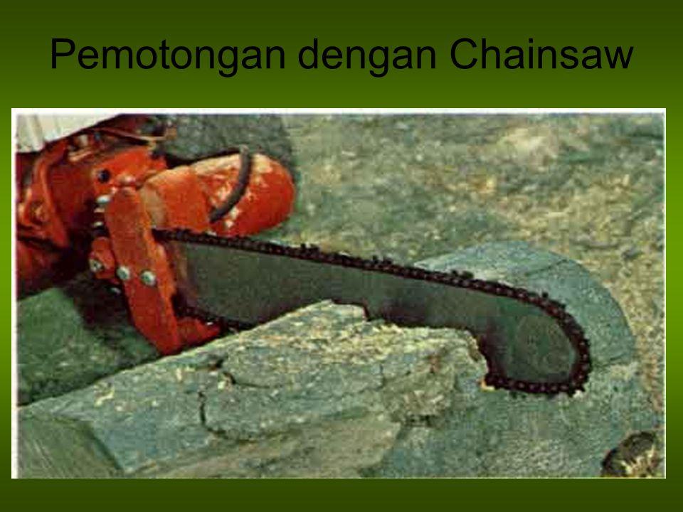 Pemotongan dengan Chainsaw