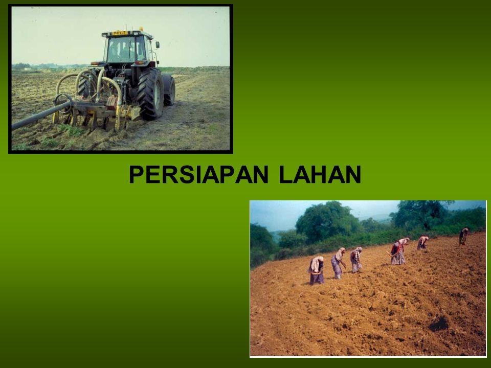 PERSIAPAN LAHAN