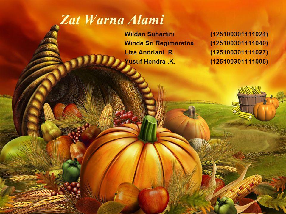 Zat Warna Alami Wildan Suhartini(125100301111024) Winda Sri Regimaretna(125100301111040) Liza Andriani.R.(125100301111027) Yusuf Hendra.K.(125100301111005)