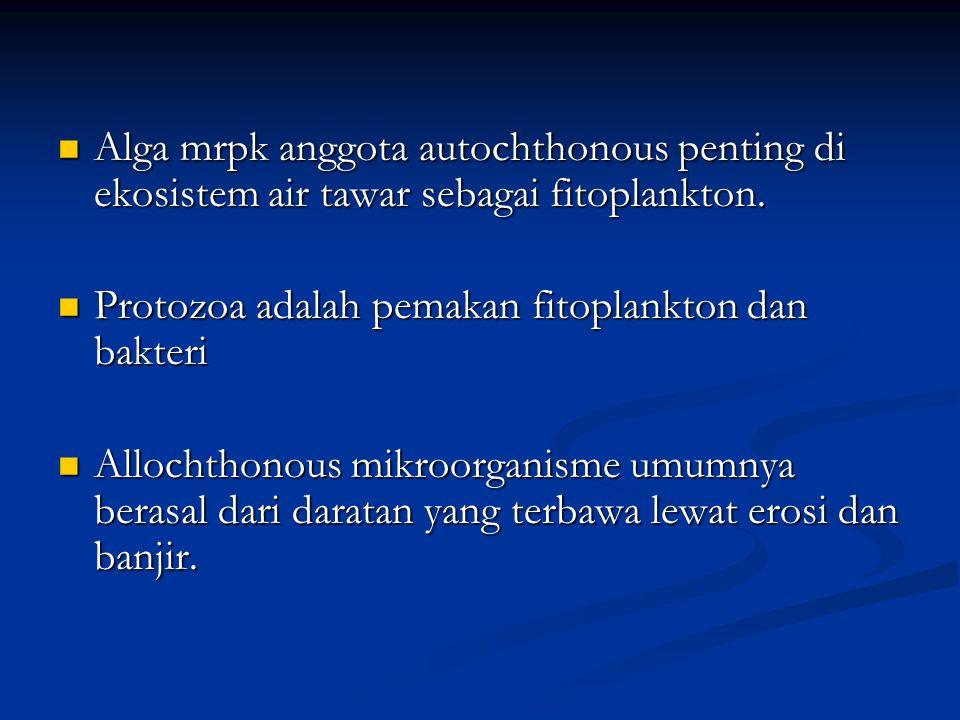 Alga mrpk anggota autochthonous penting di ekosistem air tawar sebagai fitoplankton. Alga mrpk anggota autochthonous penting di ekosistem air tawar se