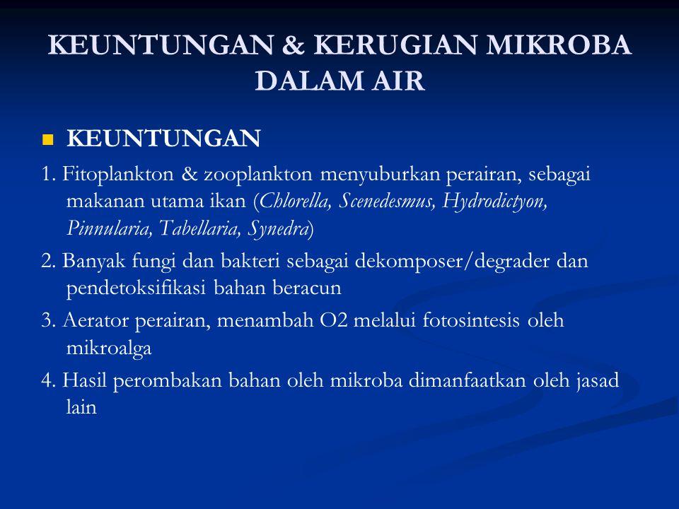 KEUNTUNGAN & KERUGIAN MIKROBA DALAM AIR KEUNTUNGAN 1.