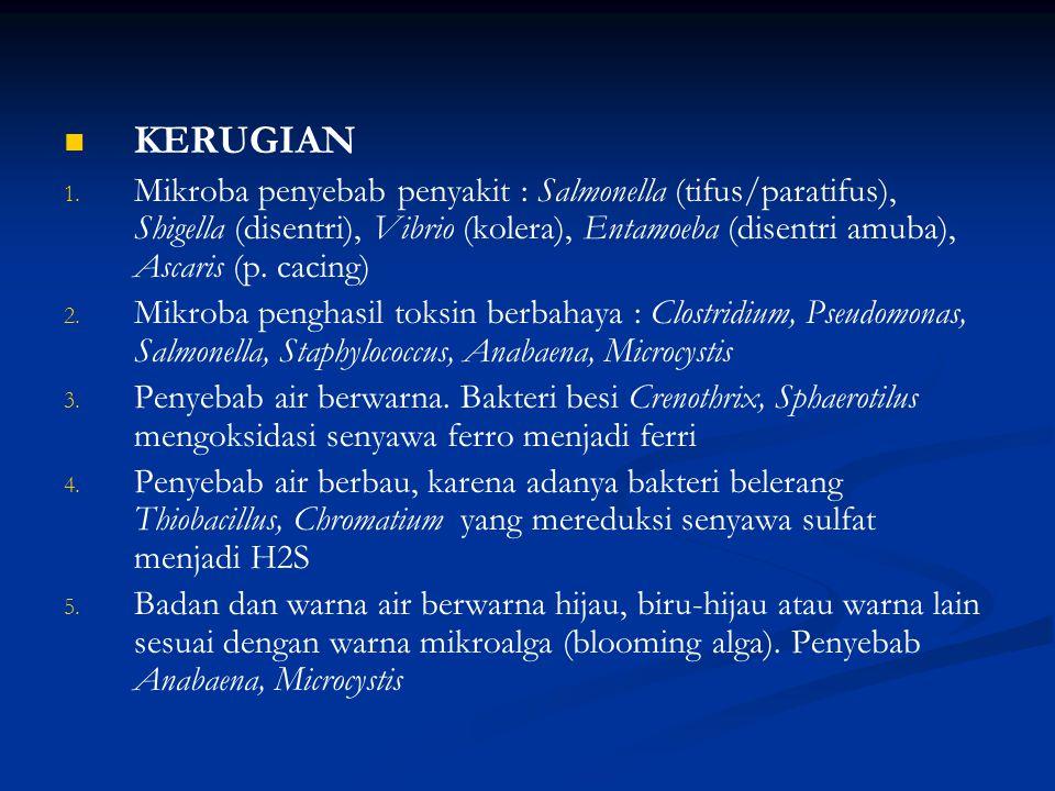 KERUGIAN 1.1.
