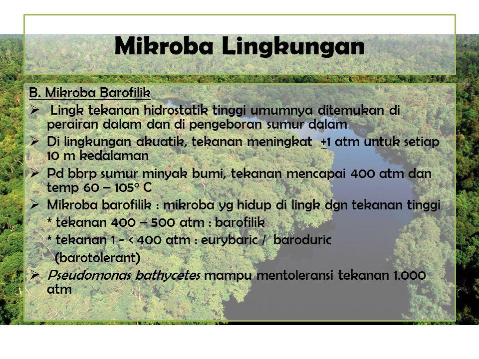 Mikroba Lingkungan B. Mikroba Barofilik  Lingk tekanan hidrostatik tinggi umumnya ditemukan di perairan dalam dan di pengeboran sumur dalam  Di ling