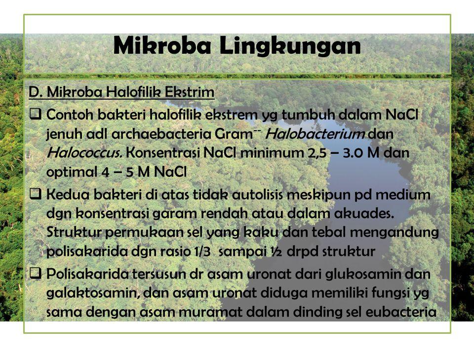 Mikroba Lingkungan D. Mikroba Halofilik Ekstrim  Contoh bakteri halofilik ekstrem yg tumbuh dalam NaCl jenuh adl archaebacteria Gram -- Halobacterium