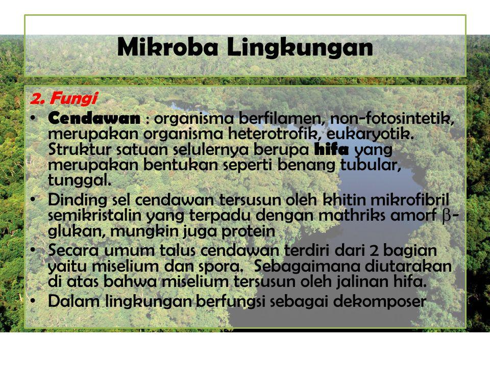 Mikroba Lingkungan 2. Fungi Cendawan : organisma berfilamen, non-fotosintetik, merupakan organisma heterotrofik, eukaryotik. Struktur satuan selulerny