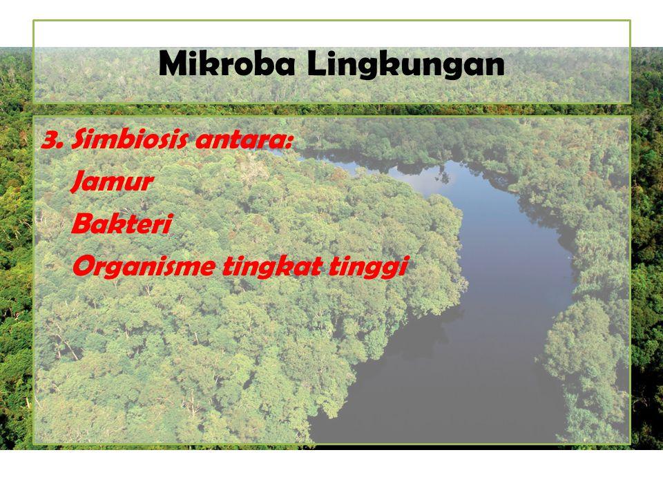 Mikroba Lingkungan 3. Simbiosis antara: Jamur Bakteri Organisme tingkat tinggi