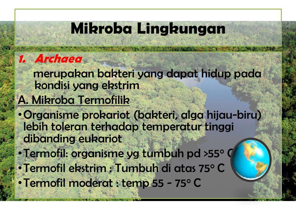 Mikroba Lingkungan 1.Archaea merupakan bakteri yang dapat hidup pada kondisi yang ekstrim A. Mikroba Termofilik Organisme prokariot (bakteri, alga hij