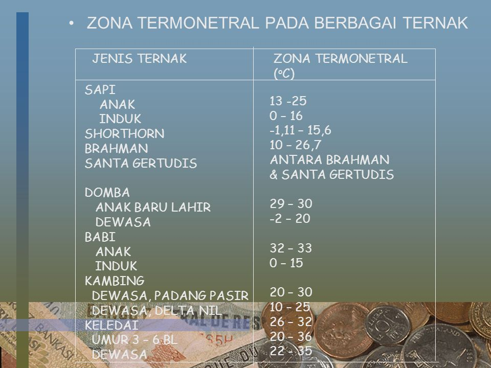 ZONA TERMONETRAL PADA BERBAGAI TERNAK JENIS TERNAKZONA TERMONETRAL ( o C) SAPI ANAK INDUK SHORTHORN BRAHMAN SANTA GERTUDIS DOMBA ANAK BARU LAHIR DEWAS