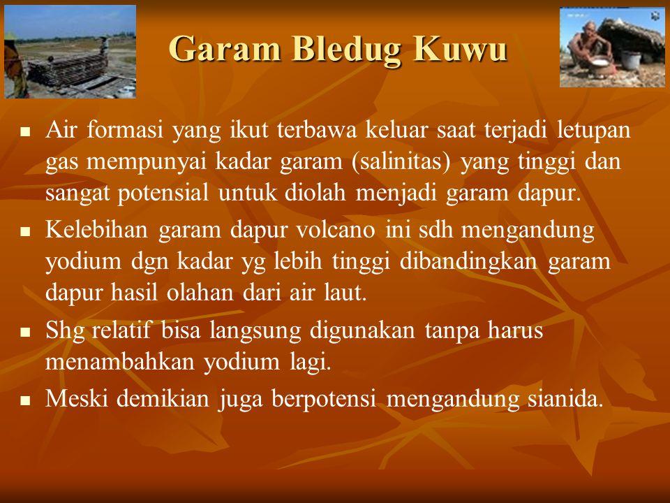 Garam Bledug Kuwu Air formasi yang ikut terbawa keluar saat terjadi letupan gas mempunyai kadar garam (salinitas) yang tinggi dan sangat potensial unt
