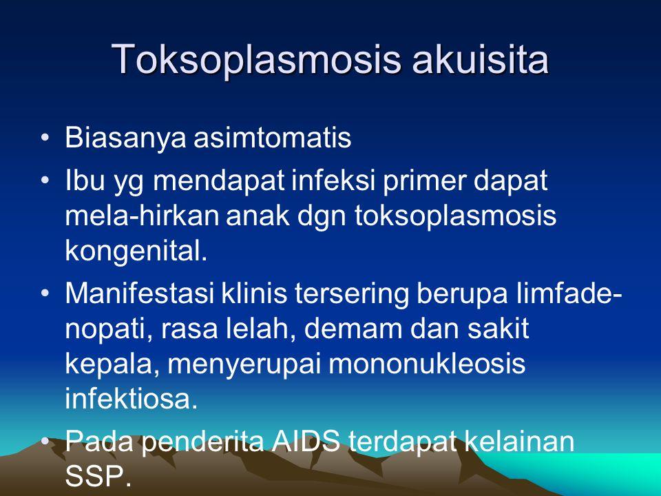 Toksoplasmosis akuisita Biasanya asimtomatis Ibu yg mendapat infeksi primer dapat mela-hirkan anak dgn toksoplasmosis kongenital. Manifestasi klinis t