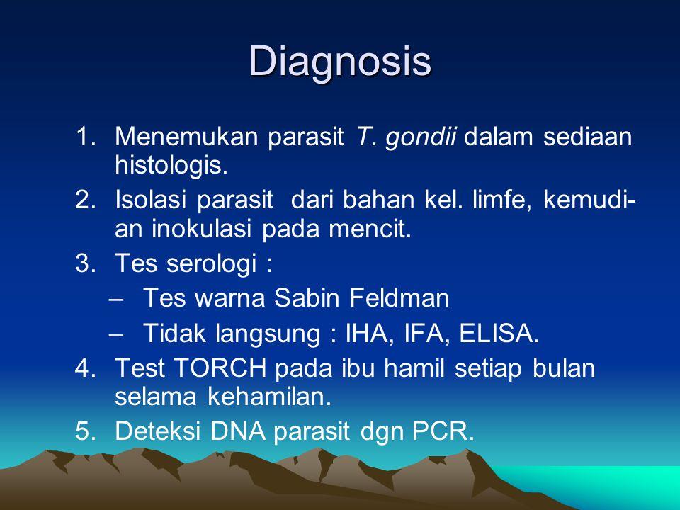 Diagnosis 1.Menemukan parasit T. gondii dalam sediaan histologis. 2.Isolasi parasit dari bahan kel. limfe, kemudi- an inokulasi pada mencit. 3.Tes ser