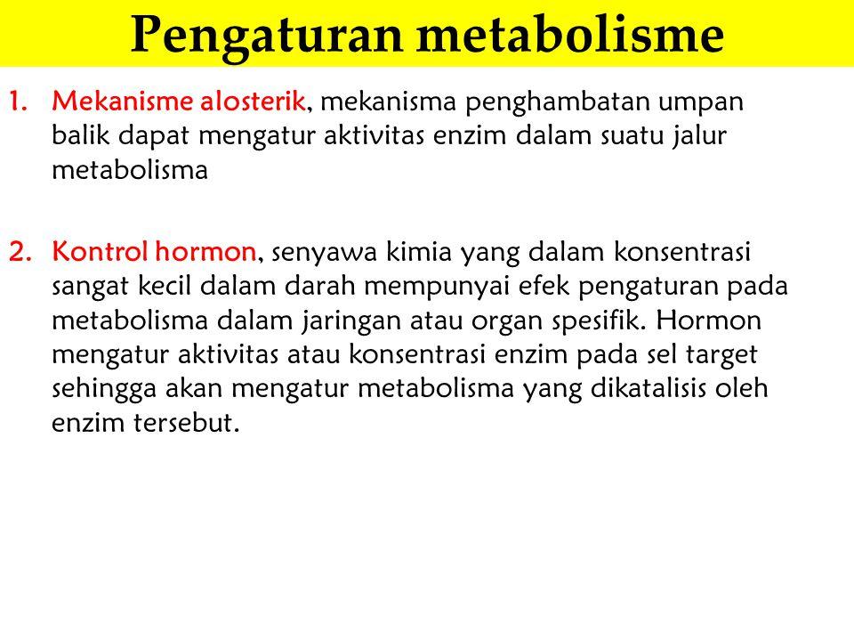 Pengaturan metabolisme 1.Mekanisme alosterik, mekanisma penghambatan umpan balik dapat mengatur aktivitas enzim dalam suatu jalur metabolisma 2.Kontro