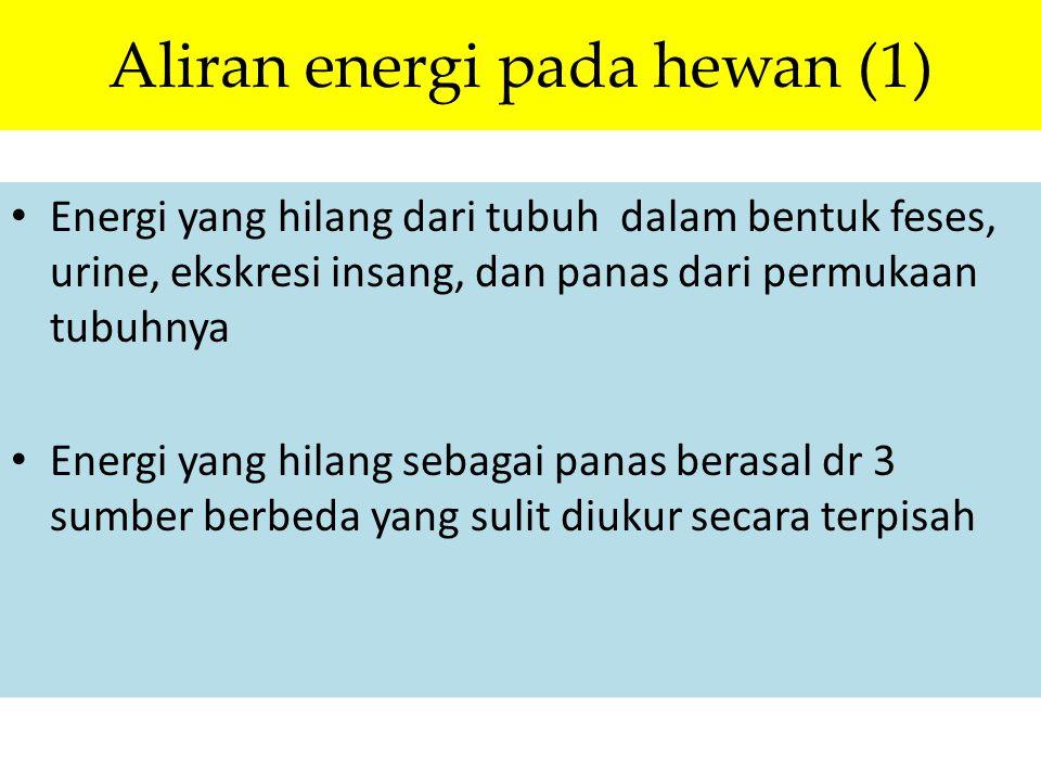 Aliran energi pada hewan (1) Energi yang hilang dari tubuh dalam bentuk feses, urine, ekskresi insang, dan panas dari permukaan tubuhnya Energi yang h