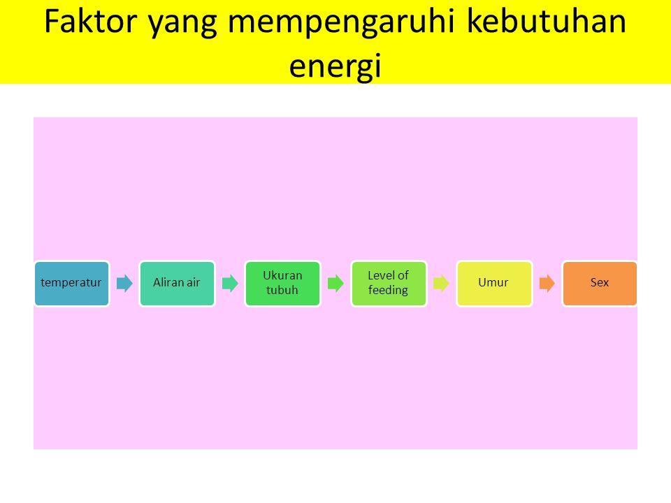 Faktor yang mempengaruhi kebutuhan energi temperaturAliran air Ukuran tubuh Level of feeding UmurSex