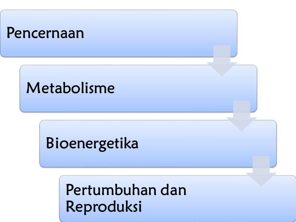 PencernaanMetabolismeBioenergetika Pertumbuhan dan Reproduksi