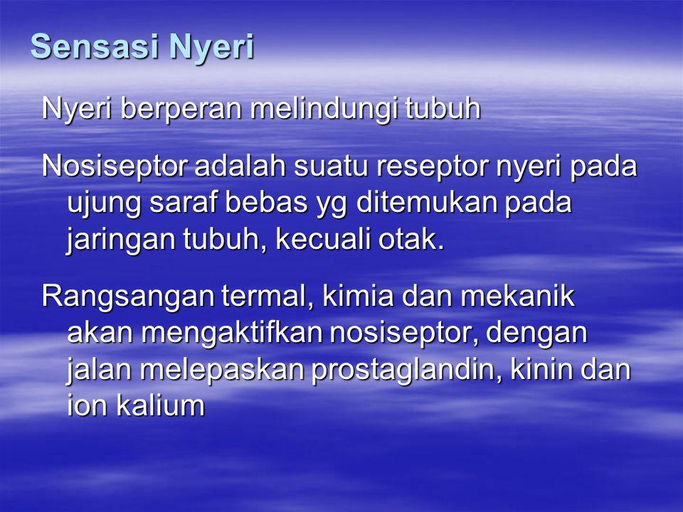 Sensasi Nyeri Nyeri berperan melindungi tubuh Nosiseptor adalah suatu reseptor nyeri pada ujung saraf bebas yg ditemukan pada jaringan tubuh, kecuali otak.