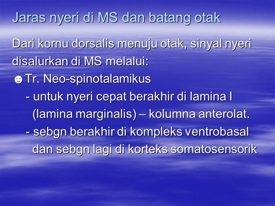 Jaras nyeri di MS dan batang otak Dari kornu dorsalis menuju otak, sinyal nyeri disalurkan di MS melalui: ☻Tr. Neo-spinotalamikus - untuk nyeri cepat