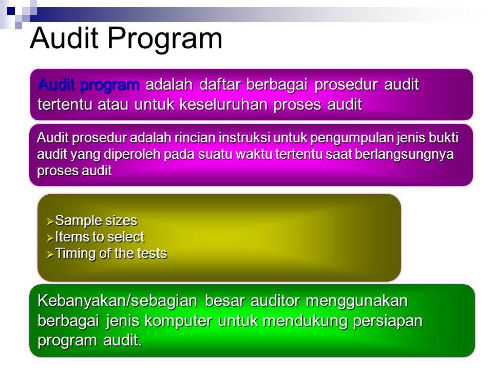 Audit Program Audit prosedur adalah rincian instruksi untuk pengumpulan jenis bukti audit yang diperoleh pada suatu waktu tertentu saat berlangsungnya proses audit Kebanyakan/sebagian besar auditor menggunakan berbagai jenis komputer untuk mendukung persiapan program audit.