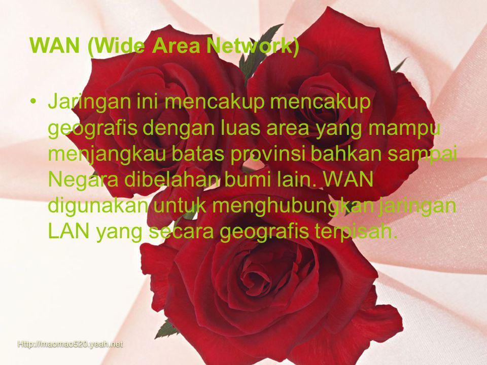 WAN (Wide Area Network) Jaringan ini mencakup mencakup geografis dengan luas area yang mampu menjangkau batas provinsi bahkan sampai Negara dibelahan