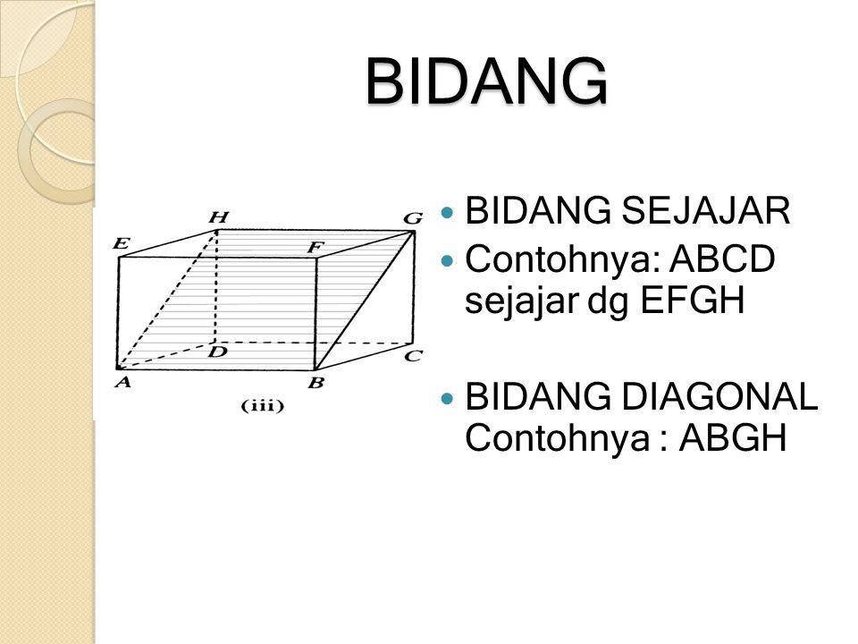 BIDANG BIDANG SEJAJAR Contohnya: ABCD sejajar dg EFGH BIDANG DIAGONAL Contohnya : ABGH