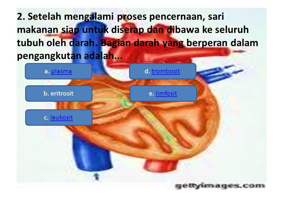 2. Setelah mengalami proses pencernaan, sari makanan siap untuk diserap dan dibawa ke seluruh tubuh oleh darah. Bagian darah yang berperan dalam penga