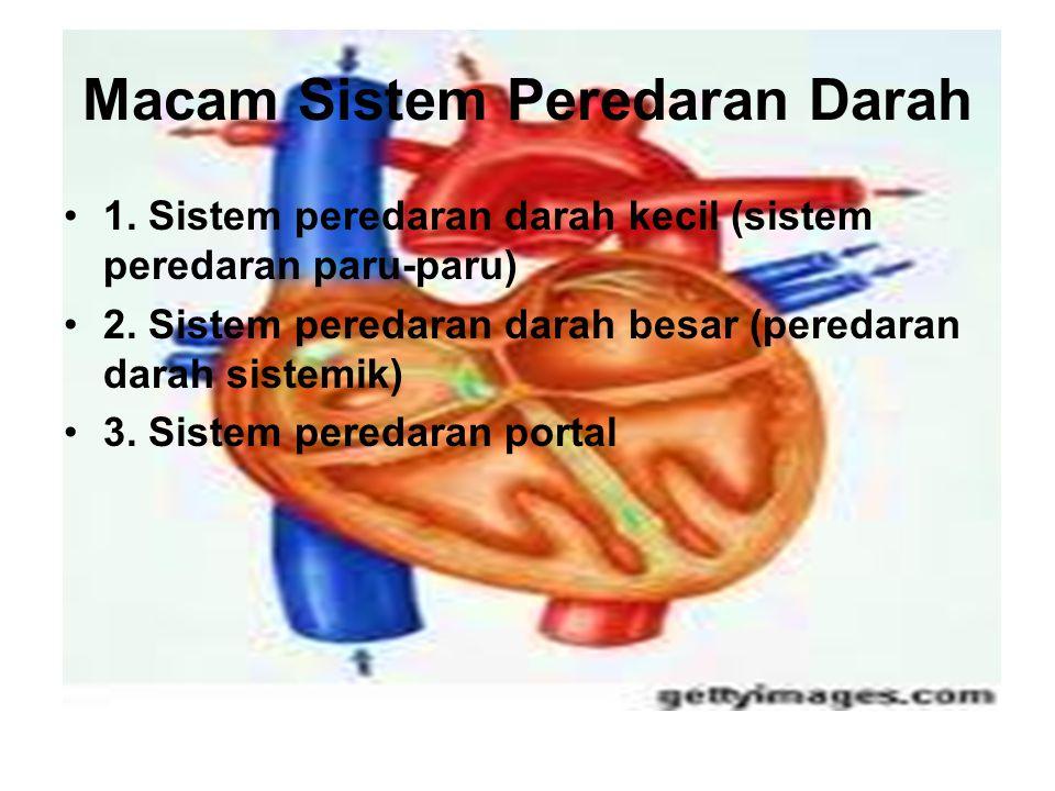 Macam Sistem Peredaran Darah 1. Sistem peredaran darah kecil (sistem peredaran paru-paru) 2. Sistem peredaran darah besar (peredaran darah sistemik) 3