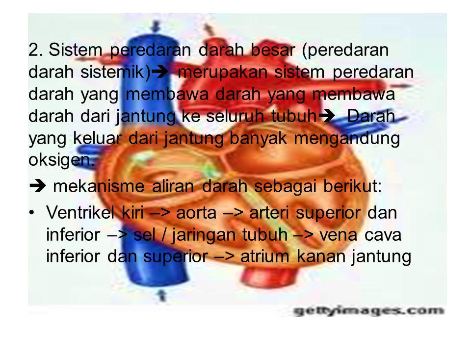 2. Sistem peredaran darah besar (peredaran darah sistemik)  merupakan sistem peredaran darah yang membawa darah yang membawa darah dari jantung ke se