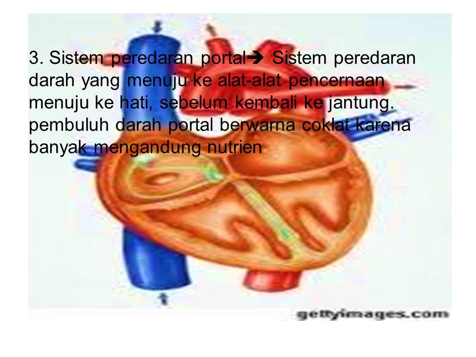 3. Sistem peredaran portal  Sistem peredaran darah yang menuju ke alat-alat pencernaan menuju ke hati, sebelum kembali ke jantung. pembuluh darah por