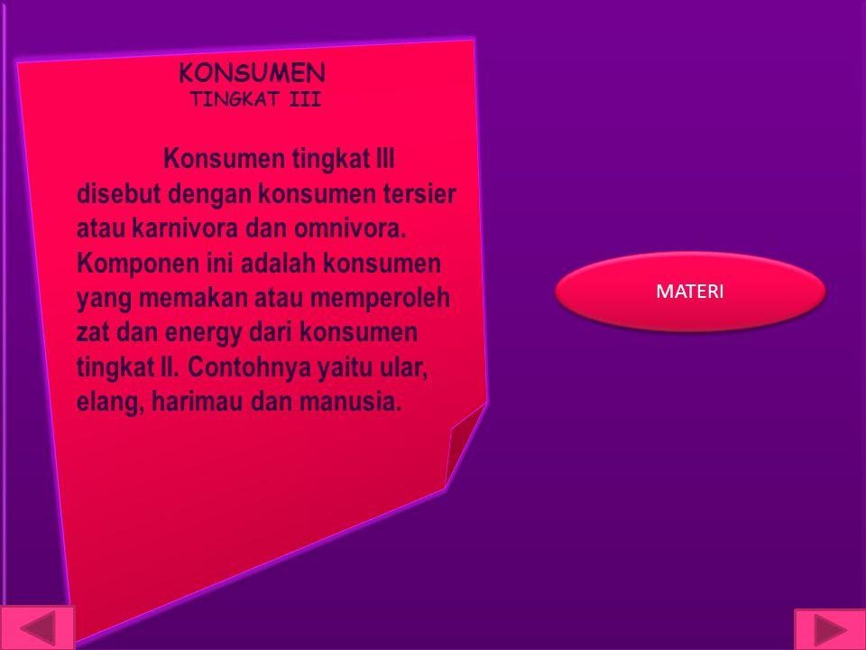KONSUMEN TINGKAT III Konsumen tingkat III disebut dengan konsumen tersier atau karnivora dan omnivora. Komponen ini adalah konsumen yang memakan atau