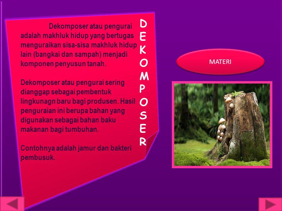 DEKOMPOSERDEKOMPOSER Dekomposer atau pengurai adalah makhluk hidup yang bertugas menguraikan sisa-sisa makhluk hidup lain (bangkai dan sampah) menjadi komponen penyusun tanah.