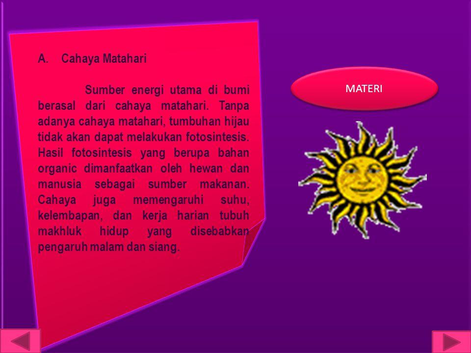 A.Cahaya Matahari Sumber energi utama di bumi berasal dari cahaya matahari. Tanpa adanya cahaya matahari, tumbuhan hijau tidak akan dapat melakukan fo