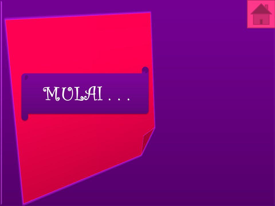MULAI...