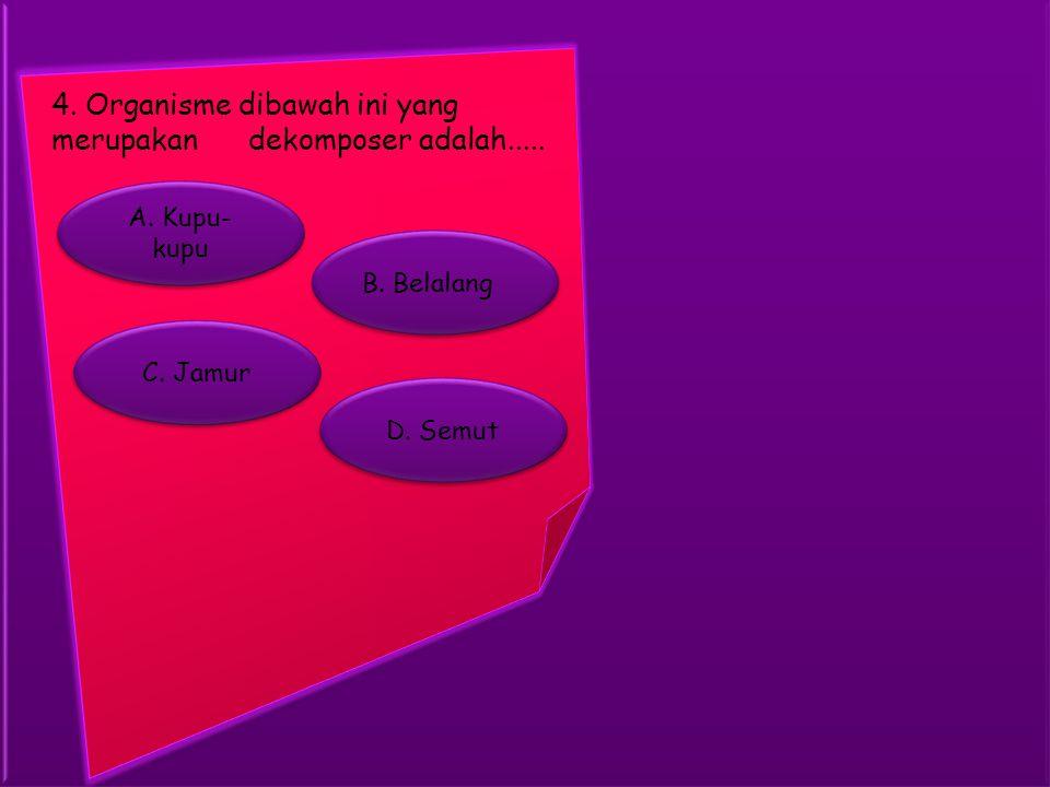 4.Organisme dibawah ini yang merupakan dekomposer adalah.....