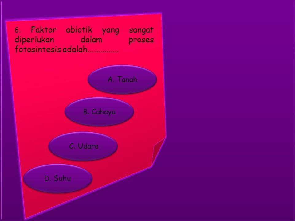 B. Cahaya A. Tanah C. Udara D. Suhu 6. Faktor abiotik yang sangat diperlukan dalam proses fotosintesis adalah...............