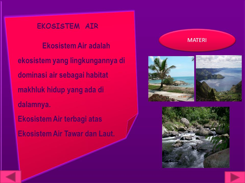 EKOSISTEM AIR Ekosistem Air adalah ekosistem yang lingkungannya di dominasi air sebagai habitat makhluk hidup yang ada di dalamnya.