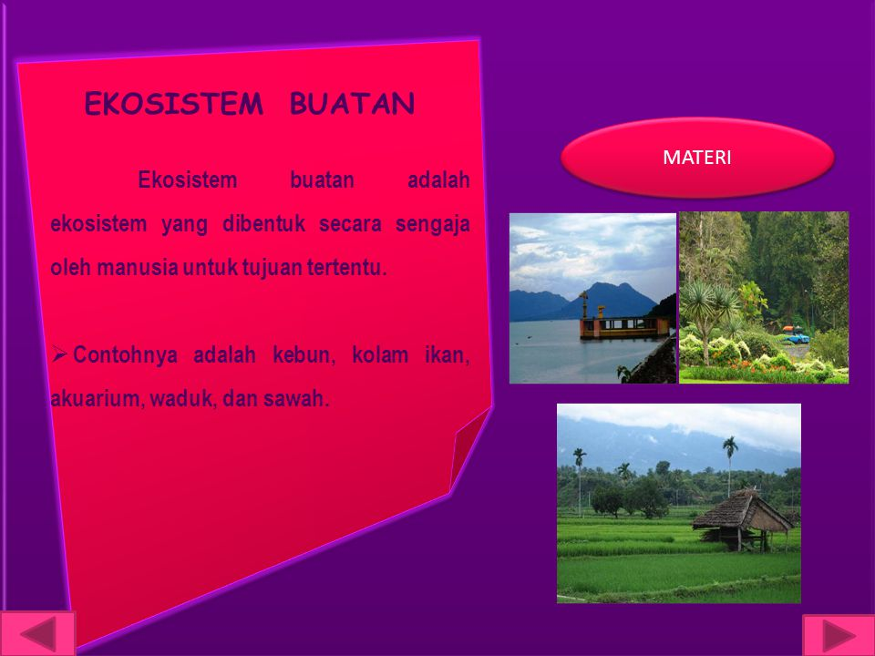 EKOSISTEM BUATAN Ekosistem buatan adalah ekosistem yang dibentuk secara sengaja oleh manusia untuk tujuan tertentu.