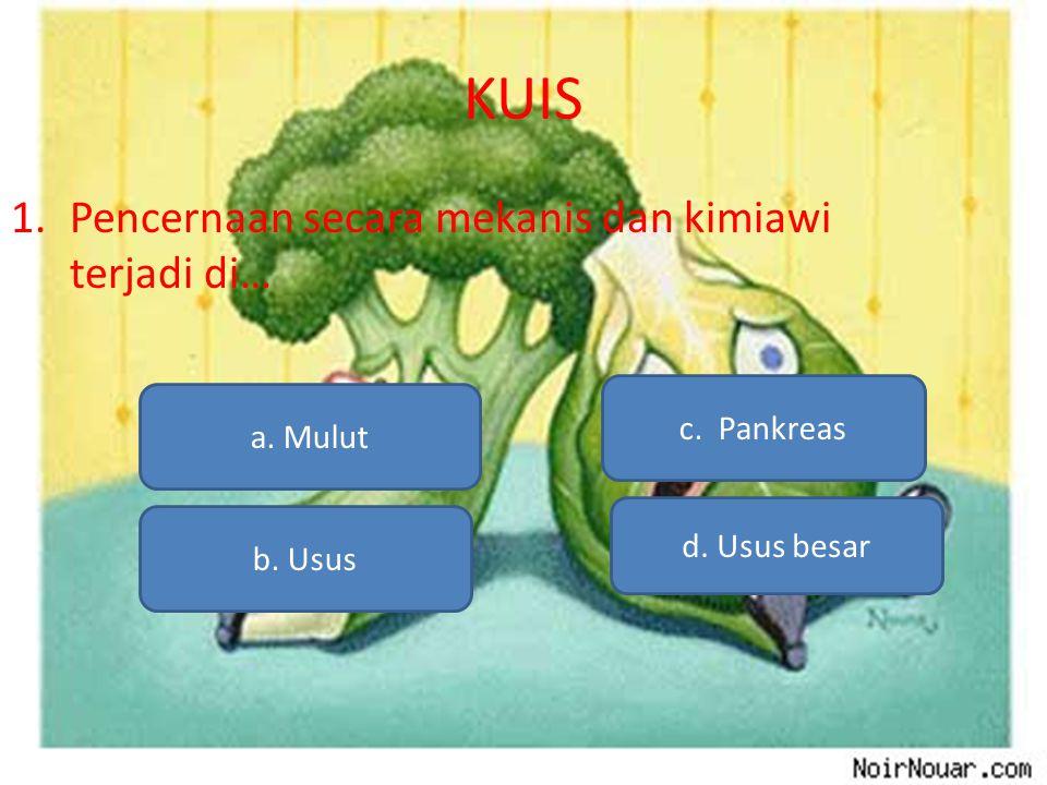 KUIS 1.Pencernaan secara mekanis dan kimiawi terjadi di… a. Mulut b. Usus d. Usus besar c. Pankreas