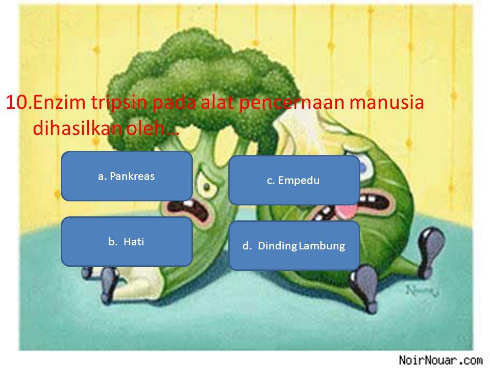 10.Enzim tripsin pada alat pencernaan manusia dihasilkan oleh… a. Pankreas b. Hati d. Dinding Lambung c. Empedu