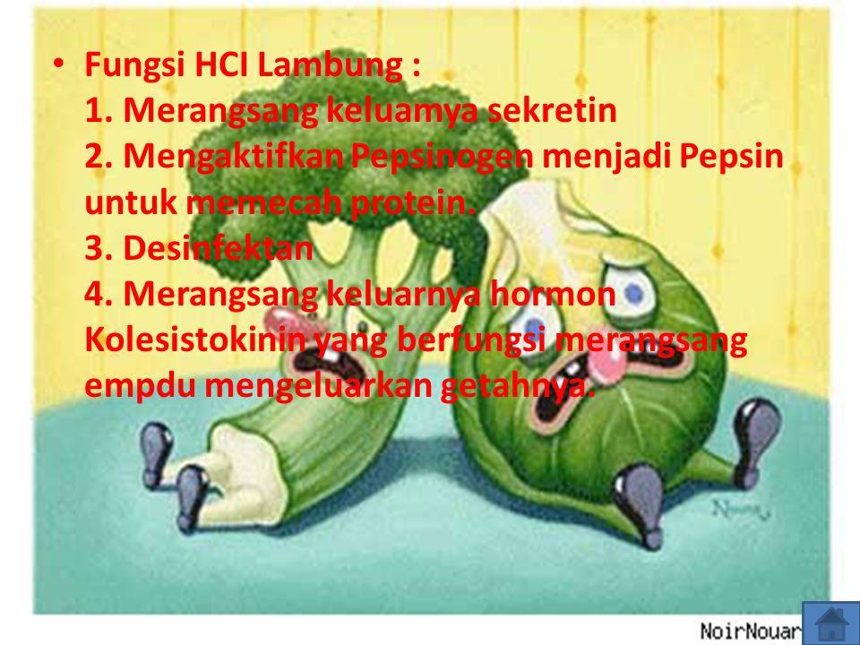 Fungsi HCI Lambung : 1. Merangsang keluamya sekretin 2. Mengaktifkan Pepsinogen menjadi Pepsin untuk memecah protein. 3. Desinfektan 4. Merangsang kel